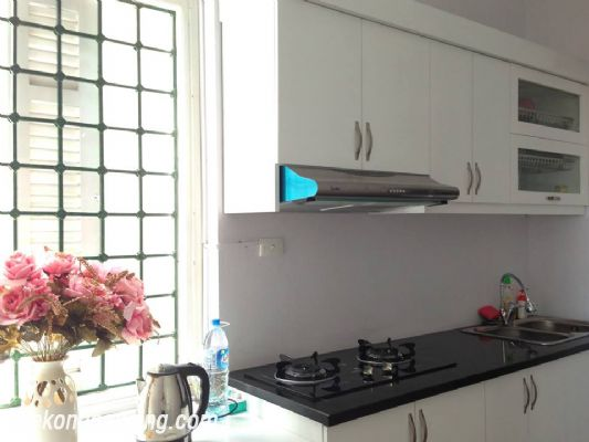 A nice serviced apartment with 1 bedroom for rent in Vong Thi street, Tay Ho district 3