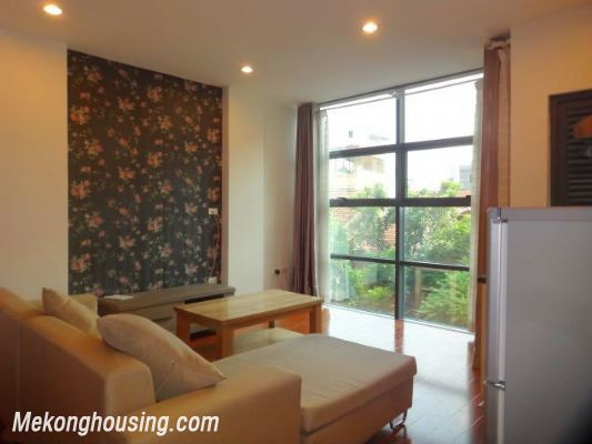 Band new serviced apartment for rent in Pho Duc Chinh street, Ba Dinh, Hanoi 1