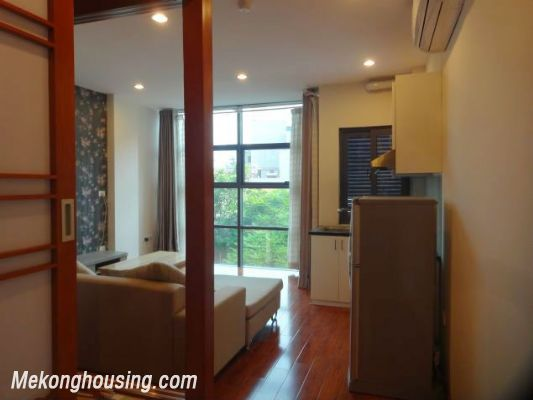 Band new serviced apartment for rent in Pho Duc Chinh street, Ba Dinh, Hanoi 10