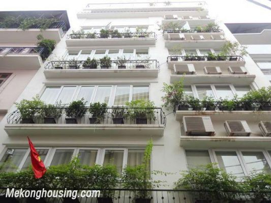 Beautiful serviced apartment for rent in Vong Thi street, Tay Ho district, Hanoi 1