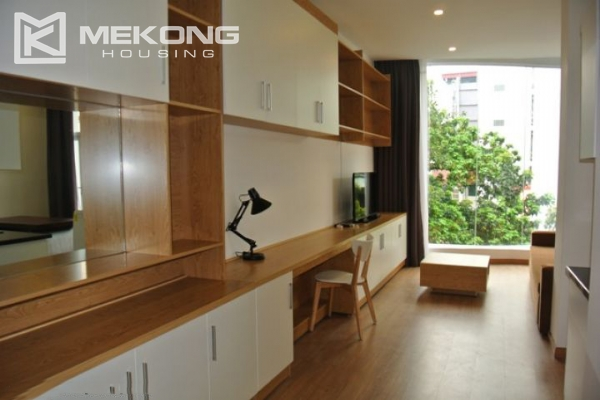 Bright and comfortable apartment for rent in Trieu Viet Vuong street 3