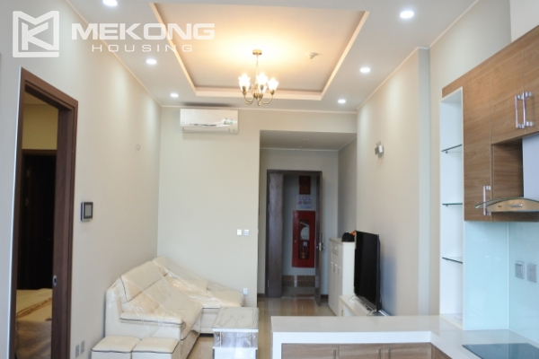 Bright apartment with 2 bedrooms for rent in Trang An Complex 2