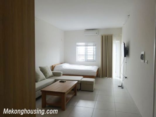Cheap Apartment For Lease in Lac Long Quan Street 1