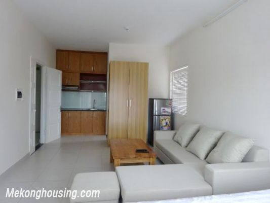 Cheap Apartment For Lease in Lac Long Quan Street 2