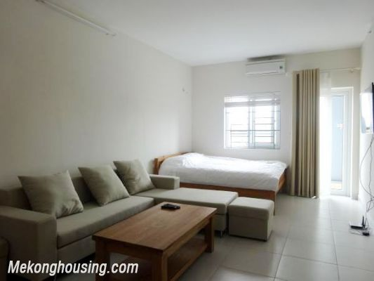 Cheap Apartment For Lease in Lac Long Quan Street 3