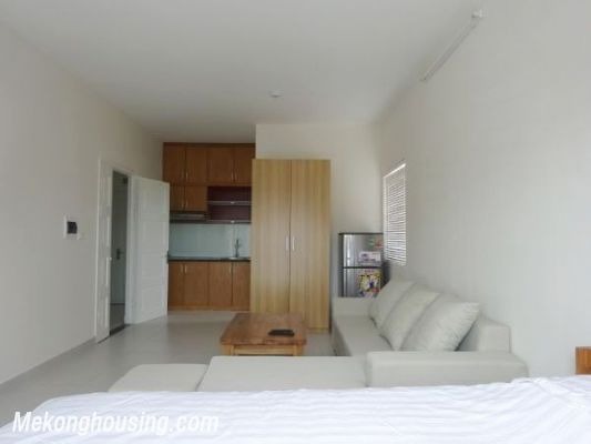 Cheap Apartment For Lease in Lac Long Quan Street 5
