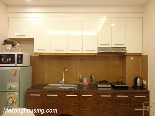 Luxury serviced apartment with 2 bedrooms for rent in Tran Phu, Ba Dinh, Hanoi 4