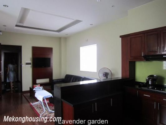 Nice and Modern Serviced Apartment Renting in Cau Dat st, Hoan Kiem dis 10