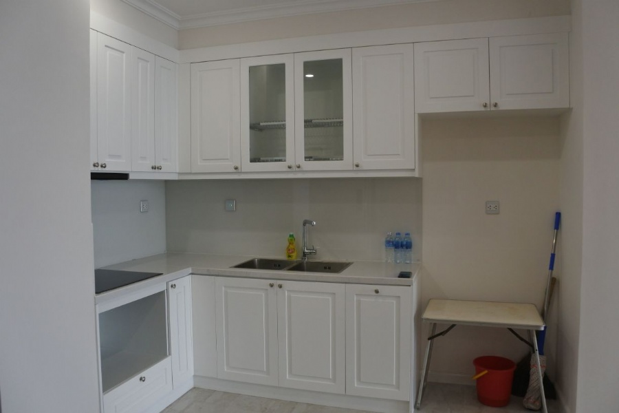 Price cheap 2 bedroom apartment for rent in R2 Sunshine Riverside 2