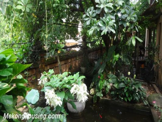 Rental old style French villa, fully furnished in Ngoc Thuy, Long Bien, Hanoi 2